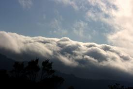 fog Santa Cruz Mountains